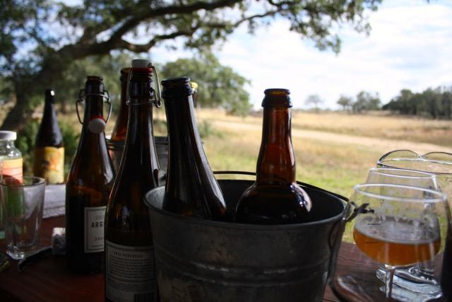 beer bottles being iced in bucket
