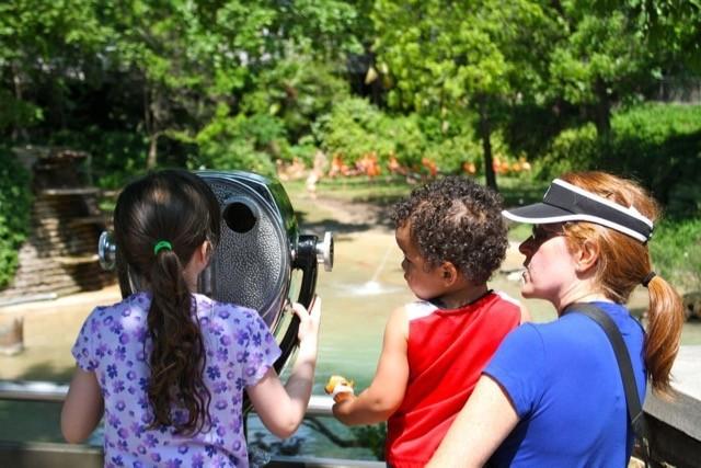 Kids at Dallas Zoo