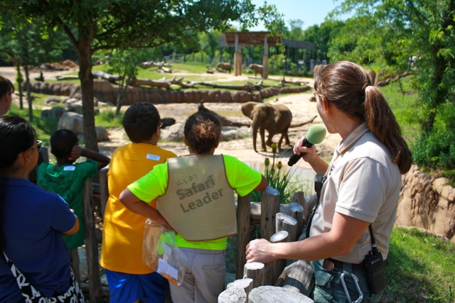Dallas Zoo Elephant Trainer